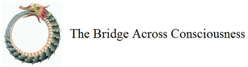 Bridge Across Consciousness